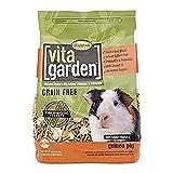Higgins Vita Garden Guinea Pig Food, 4 Lbs, Large