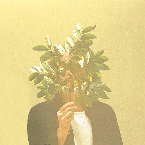 FKJ - French Kiwi Juice (2017) [WEB FLAC] Download