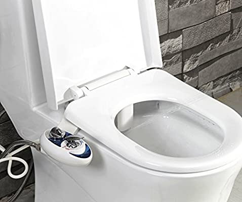 Astonishing Luxe Bidet Neo 320 Self Cleaning Dual Nozzle Hot And Gmtry Best Dining Table And Chair Ideas Images Gmtryco