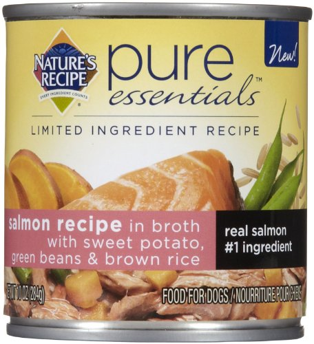 Pure Essentials Salmon Can Dog Food (12 Pack)