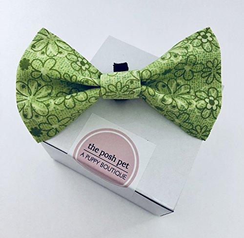 Posh Pet Boutique - Green Bowtie
