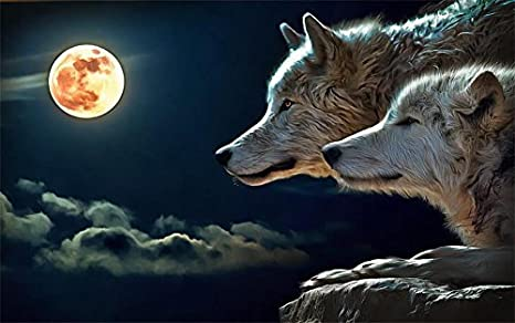 Apps de fondos de pantalla de lobos