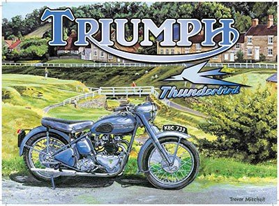 ART/ARTWORK - Licensed Collectibles, Vintage, Antique And Original Designs - LOVELY MOTORCYCLE (Thunder Cycle Designs)