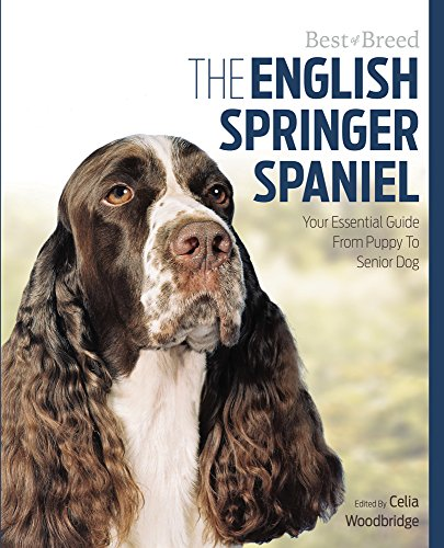 (The English Springer Spaniel: Your Essential Guide From Puppy To Senior Dog (Best of Breed) )