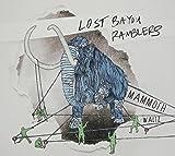 Lost Bayou Ramblers : Mammoth Waltz