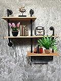 Wendy JINGQI Industrial Pipe Shelf For Home Organizer Storage, 4 Tiers Rustic Urban Style Metal Wall Mounted Ledge Bookcase Shelf Rustic Modern Wood ladder pipe wall shelf