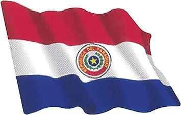 Artimagen Pegatina Bandera Ondeante Paraguay Mediana 80x60 mm.: Amazon.es: Coche y moto