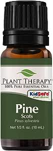 Plant Therapy Pine Scots Essential Oil 10 mL (1/3 oz) 100% Pure, Undiluted, Therapeutic Grade