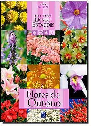 Flores Do Outono - Coleção Quatro Estacoes: Amazon.es: Valerio Romahn: Libros