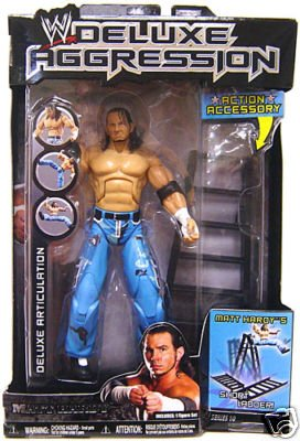 Action Figure Matt (Deluxe Aggression Matt Hardy Figure by Jakks)