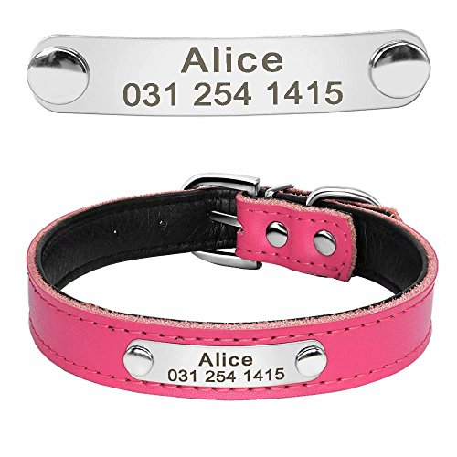 661 Leather - Didog Cute Leather Padded Custom Dog Collar with Engraved Nameplate ID Tag,Fit Cats and Small Medium Dogs,Hot Pink,XS Size