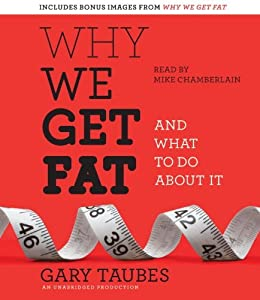 Why We Get Fat: And What to Do About It by Taubes Gary (2010-12-28) Audio CD