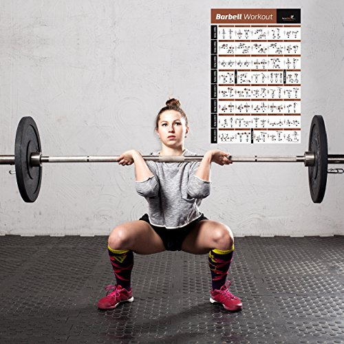 barbell workout exercise poster laminated home gym