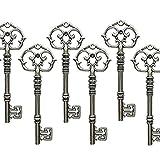 Aokbean Mixed Set of 20 Extra Large Antique Bronze Finish Skeleton Keys in Antique Style - Set of 20 Keys … (Antique Silver)