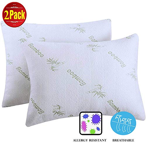 Niagara Sleep Solution 2 Pack Anti Allergy Bamboo Pillow Protectors King 20x36Inches Pair Guaranteed Noiseless Pair Zippered Hypoallergenic Cases,Noiseless Pad, Ultra Soft Skin Friendly