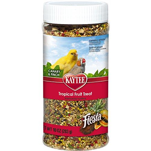 Kaytee Fiesta Tropical Fruit Canary and Finch Treat, 10-oz jar