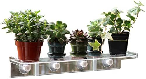 LaBrinx Designs Extra Large Suction Cup Window Shelf