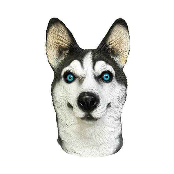 Off the Wall Toys Dogs Husky Dog Costume Face Mask Kennel Club Dog Mask for Halloween Sports and More 2