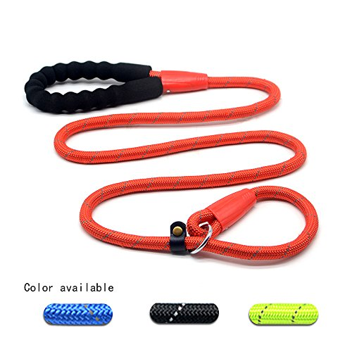 Wellbro Reflective Nylon Loop Slip Dog Leash, Pet Rope Slip Traning Lead Collar with Paded Handle, Durable and Convenient, Ideal for Medium and Large Dogs, 5.3ft Length (Red)