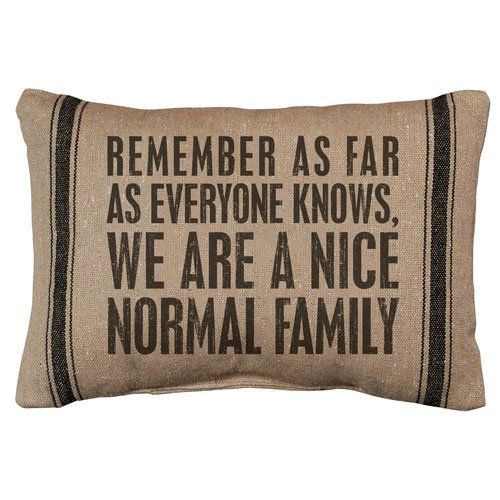 Pillow Throw Accent Nice Normal Family Funny Clever Quote Ho