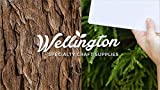 Wellington, Waterslide Decal Paper Laser Clear 20