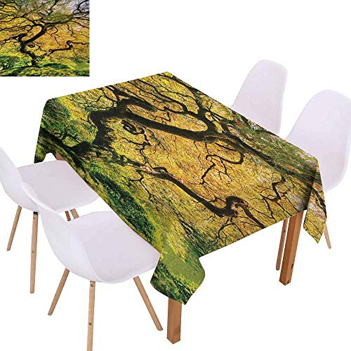 UHOO2018 Japanese,Microfiber Tablecloth,Shadows of Large Maple Along with River with Sunlight Fall Season Nature Theme,for Outdoor and Indoor Use,Green Yellow,50