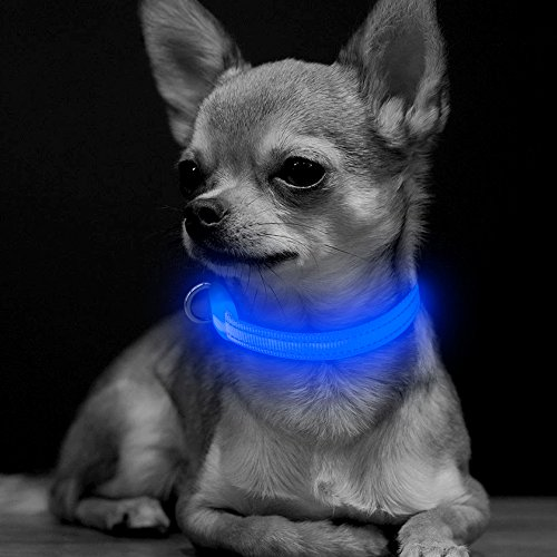 BSEEN LED Dog Collar, USB Rechargeable Glow in The Dark Flashing Pet Collar, Nylon Adjustable Light Up Puppy Collars for Small Dogs& Cats (XS, Blue)