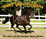 Meet the Morgans!, Ellen F. Feld, 098311384X