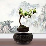 Japanese style Levitating Air Bonsai Pot - Magnetic Levitation Suspension flower (Gray)
