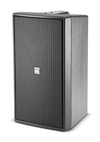 JBL Control 29AV-1 Premium Indoor / Outdoor Monitor Speaker (Black)