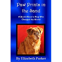 Paw Prints in the Sand: A Book About a Dog Who Changed the World