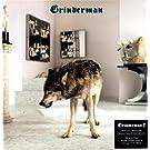 Grinderman 2 (Vinyl)