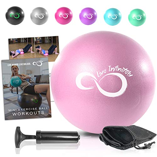 9 Inch Barre Pilates Ball & Hand Pump- Anti Burst Mini Ball & Digital Workout eBook Included For Yoga, Exercise, Balance & Stability Training - Comes With Mesh Carrying Bag (Rose, 9 Inch)