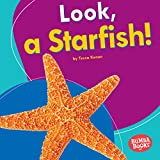 Bargain Audio Book - Look  a Starfish