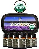 Top 6 Certified Organic Essential Oil 10ml Gift Set Therapeutic Grade Kit with Lavender, Tea Tree, Eucalyptus, Peppermint, Orange, Lemongrass