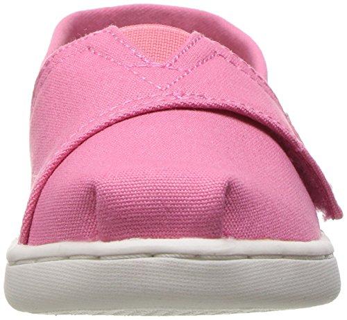 Mujer Zapatillas Canvas Canvas de Seasonal Casa Classics para Pink Estar TOMS Alpargata 650 Bubblegum Rosa por vfcTUBqqW