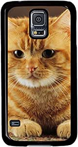 The-Obedient-Of-Orange-Color-Cat Cases for Samsung Galaxy S5 I9600 with Black sides by supermalls