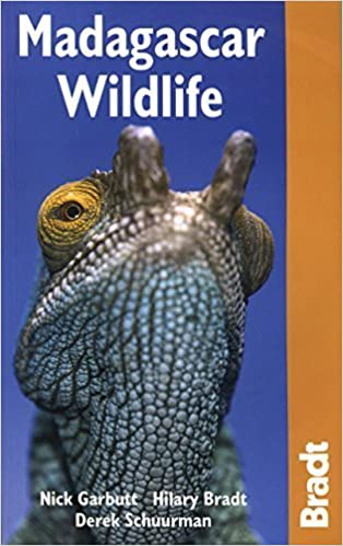 Madagascar Wildlife 3rd (Bradt Travel Guide Madagascar Wildlife) by Nick Garbutt (2008-11-25)