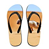 Couple Flip Flops Africa Fox Print Chic Sandals Slipper Rubber Non-Slip Spa Thong Slippers