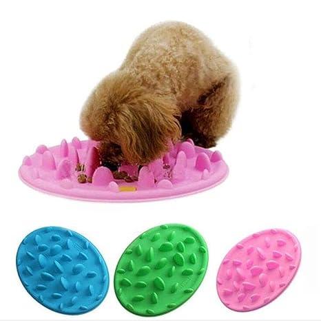 Catch Interactivo Comedero para Perro/Gato, Digestion Puzzle Comida Largo Same de Comida,
