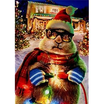 prairie dog christmas lights avanti funny box of 10 christmas cards - Funny Dog Christmas Cards