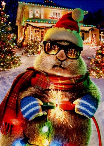 prairie dog christmas lights avanti funny box of 10 christmas cards