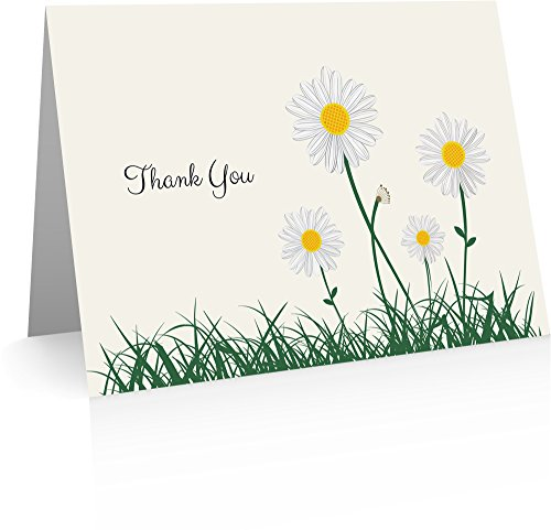 Daisies Thank You Cards (24 Foldover Cards and Envelopes)