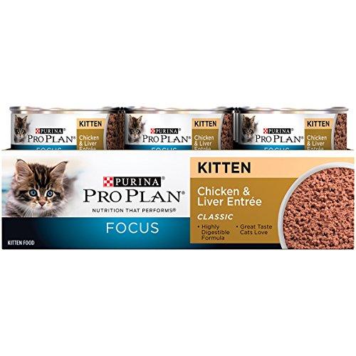 Buy kitten wet food brands
