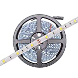 HitLights Weatherproof LED Light Strip - Cool White 5000K SMD 5050-150 LEDs, 16.4 Ft Roll - 12V DC - 109 Lumens/1.7 Watts per Foot - IP-65 - Adhesive Backed for Easy Installation - LED Tape Light