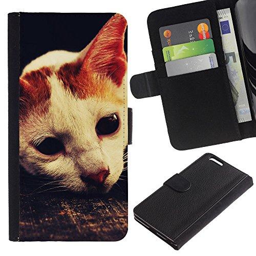 OMEGA Case / Apple Iphone 6 PLUS 5.5 / laperm American shorthair cat singapura / Cuero PU Delgado caso Billetera cubierta Shell Armor Funda Case Cover Wallet Credit Card