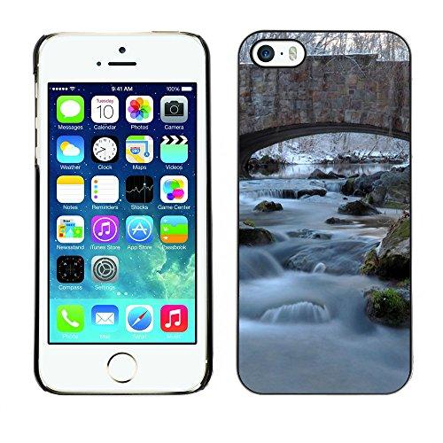 Premio Sottile Slim Cassa Custodia Case Cover Shell // F00008866 birdge // Apple iPhone 5 5S 5G