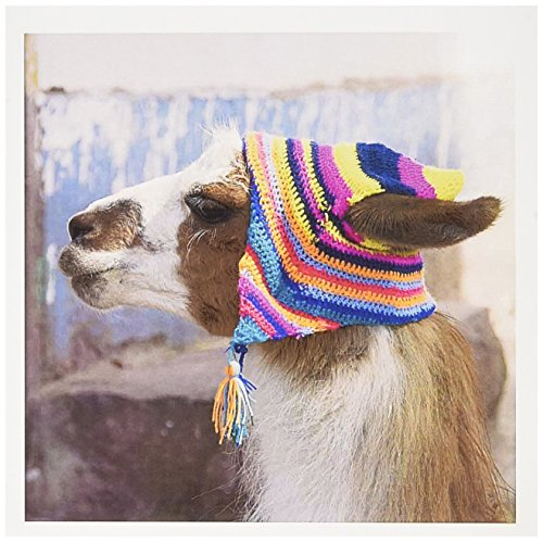 3dRose Set of 12 Greeting Cards, Peru, llama in a village (gc_87024_2)
