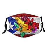 Prientomer Flag Puerto Rico Coqui Face