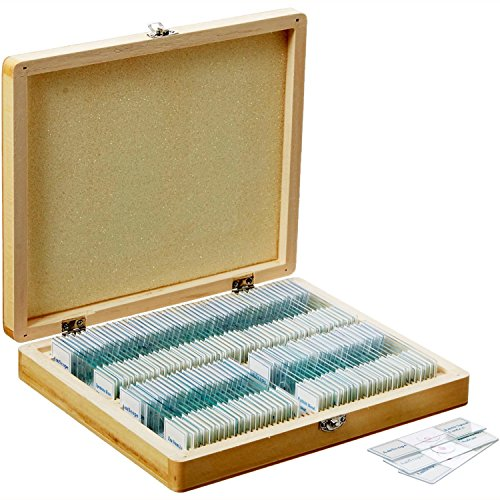 AmScope PS100E Basic Biology Prepared Slide Set for Student and Homeschool Use, Set of 100 Prepared Glass Slides (Set E), Includes Fitted Wooden Storage Box (Microscope Slides Prepared compare prices)